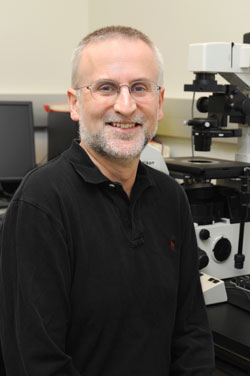 Jonathan Jones, Director of the School of Molecular Biosciences